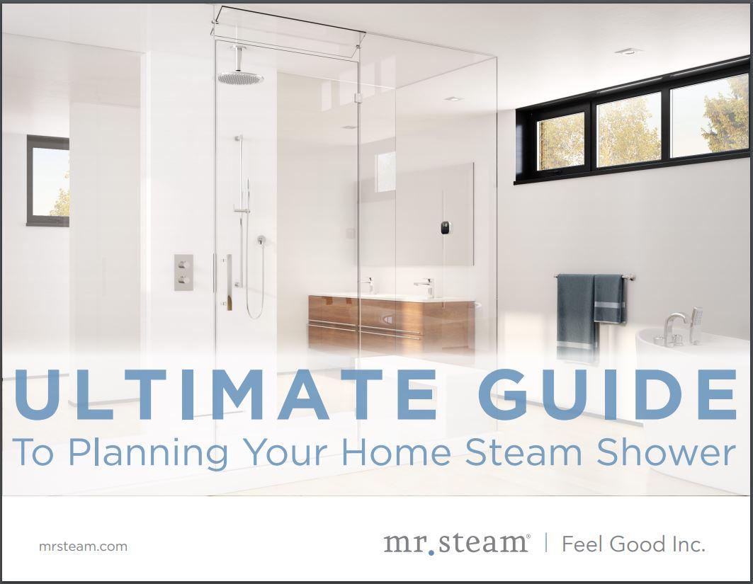 Mr. Steam Ultimate Guide